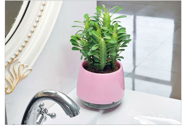Drawing room  decoration flowerpot plastic wall Suction Organizer Round  Flower Pots  Home Decoration bonsai  -Free shipping