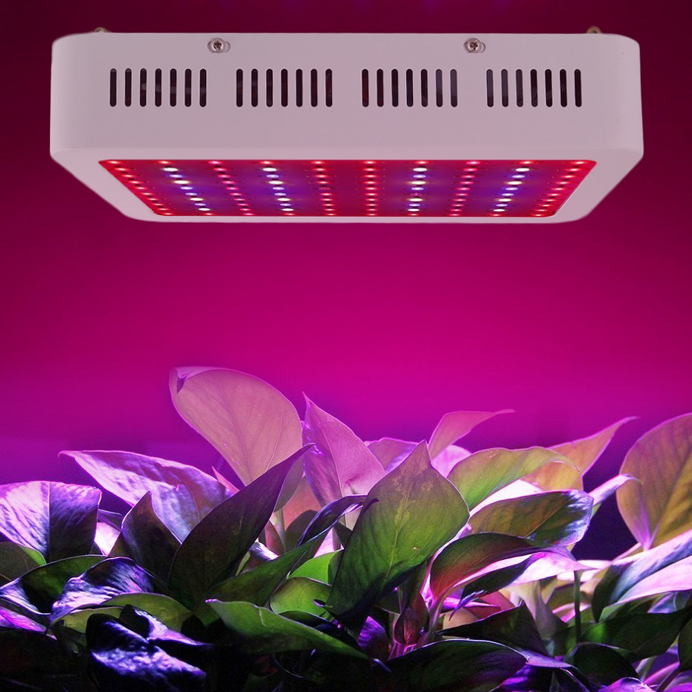Full Spectrum LED Grow Light 300W 1000W LED Grow Lamp for Indoor Greenhouse Plants Hydroponics Bloom Growth High Yield best led grow light 600w 1000w full spectrum for indoor aquario hydroponic plants veg and bloom led grow light high yield
