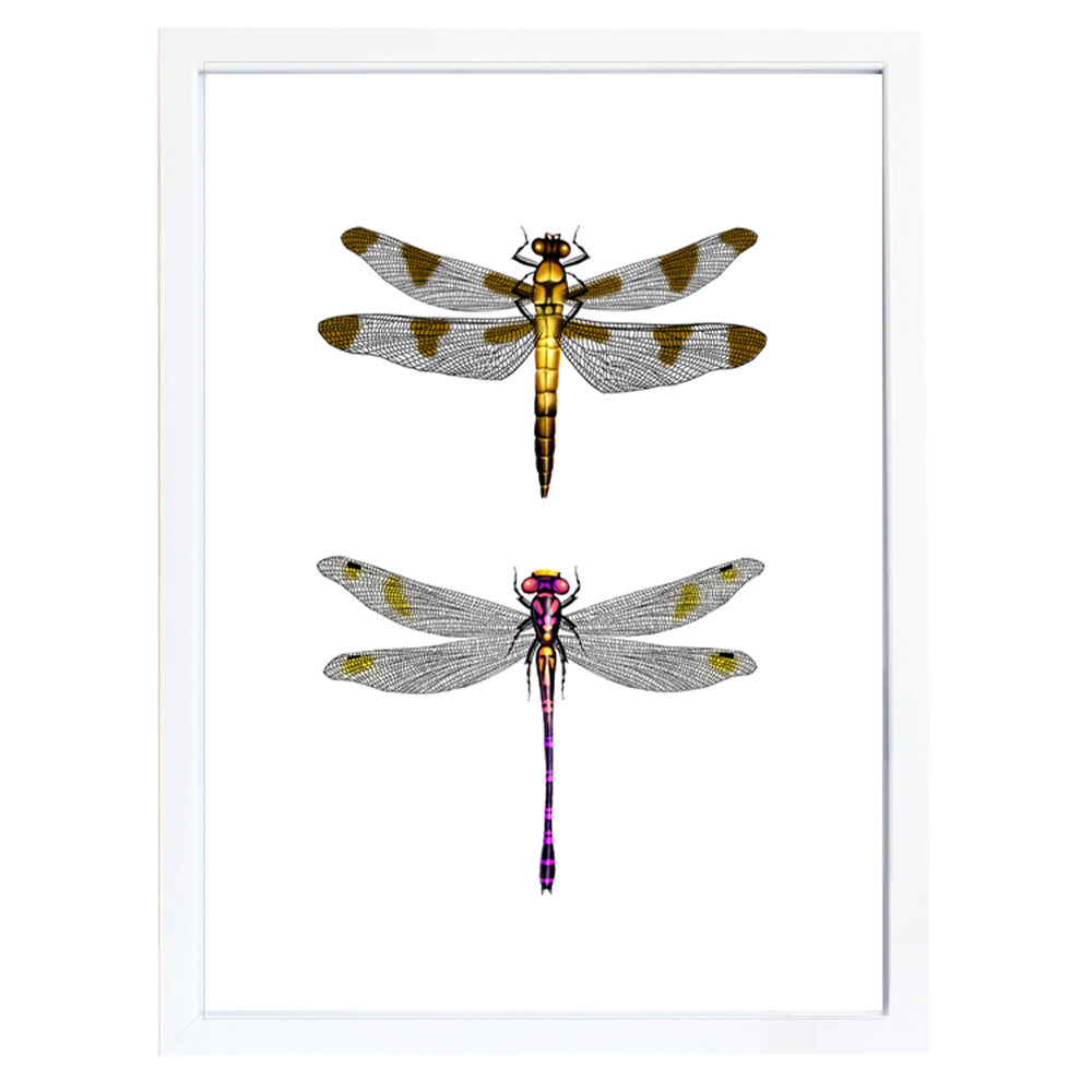 Dragonfly Canvas Painting Wall Art Printable Picture Affordable Home Decor Dragonflies Unframed LZ1012 In Calligraphy From