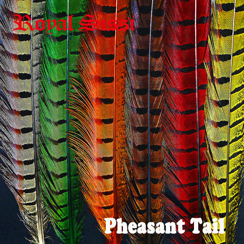 24pcs 6Colors Mixed Combo 40cm Pheasant Feather& Ringneck Pheasant Tail Fly Tying Material for Fly Fishing Bugs Lure Bait Making 5sheets pack 10cm x 5cm holographic adhesive film fly tying laser rainbow materials sticker film flash tape for fly lure fishing