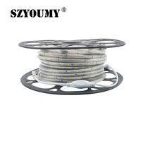 60 LEDs/ M 220V 2835 LED Strip IP67 Waterproof Flexible Strip Tape with EU Plug White/ Warm White/ Red/ Green/ Blue