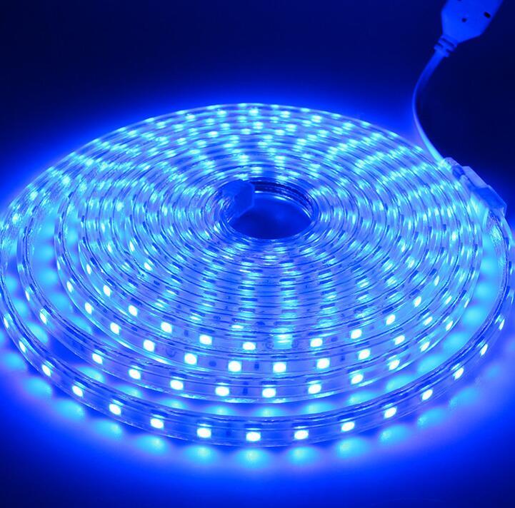 Водонепроницаемый SMD5050 Светодиодная лента AC220V компании mlight, работающая при напряжении 60 светодиодов/метр наружного освещения сада со штепсельной вилкой европейского стандарта - 6