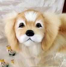 WYZHY simulation animal dog plush toy creative pet model photography window props children early education simulation soft silicone baby dolls photography props pregnancy early education utensil children play house toys l633