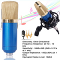 Audio Sound Condenser Microphone Kit + Wind Screen Pop Filter + Stand Blue TH137