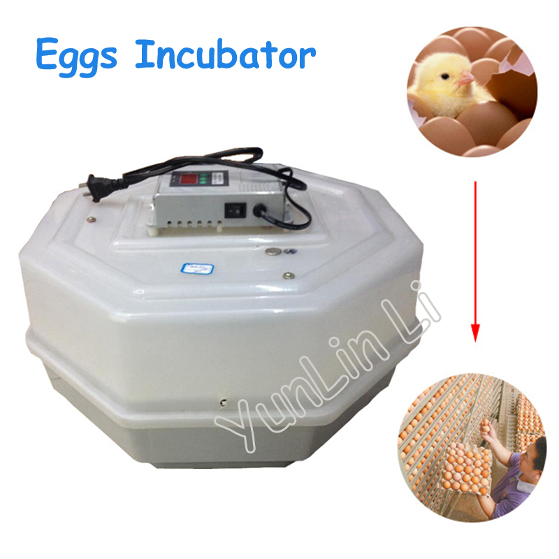 60 Eggs Incubator Digital Temperature Controller Chicken Machine Cheap Incubator Thermostat with Trays digital led thermometer temperature controller ac220v 10a thermostat incubator control microcomputer probe weather station m12