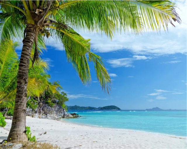 Hd Coconut Tree Seaside Landscape Nature Wallpaper Living: Beibehang Custom Wallpaper HD Beach Coconut Tree Aegean TV