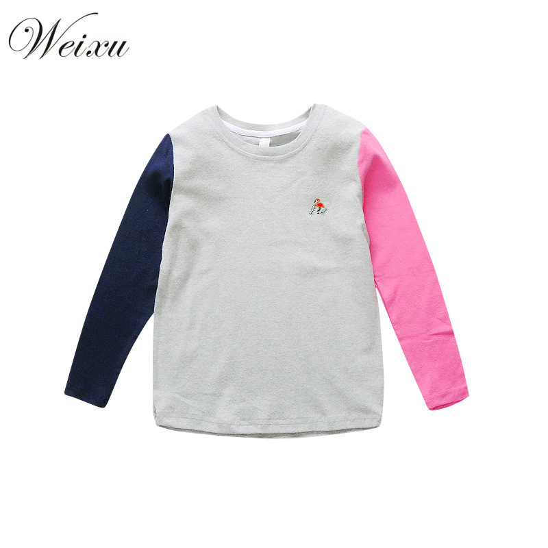 Spting Autumn Kids Girls T-shirts Long Sleeve Cotton Tshirt Child Embroidered Blouses Pullover Sweatshirt for Girls 10 Years Old