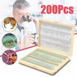 Biología 200 piezas preparado biológico ciencia básica Microscopio de vidrio de diapositivas de la escuela y de laboratorio inglés etiqueta enseñanza muestras