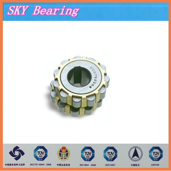 double row overall eccentric bearing 41121YEX