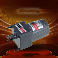 Single Phase 220V AC Vertical Micro Gear Motor 15W 3IK15GN Constant Speed Torque