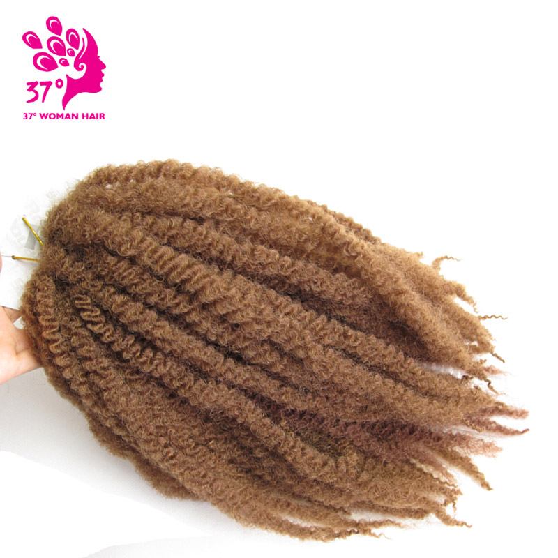 afro twist braid color30 (8)