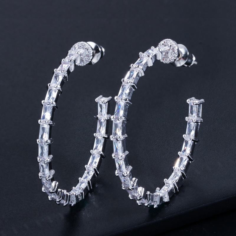Hook Earrings-AE224 -4