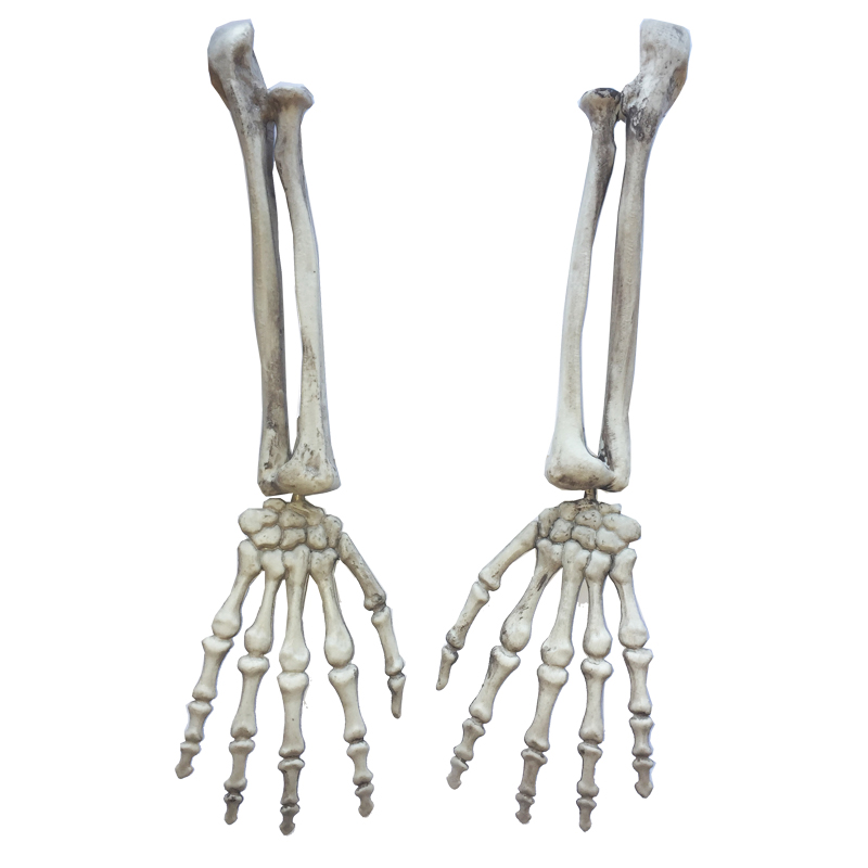 Plastic Skeleton Arms Witch Hands Haunted House Escape horror props Halloween DecorationsPlastic Skeleton Arms Witch Hands Haunted House Escape horror props Halloween Decorations