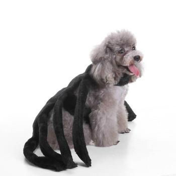 Halloween Pet Dog Costume Clothes Big Spider Costume Clothes For Dogs Chihuahua Clothing Pet Clothes