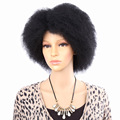 Amir Hair Cheap Afro Kinky Kanekalo Synthetic None Lace Front Wig African American Short Wigs For Black Women Yaki Cosplay Wig