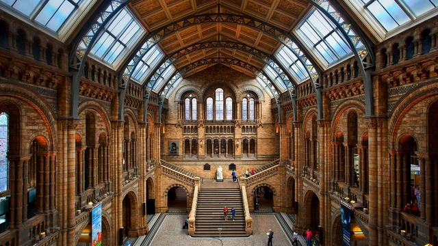 Living Room Home Wall Decoration Fabric Poster The Natural History Museum London England Hall Stairs Staircase