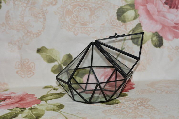 Diamond Geometric Polyhedron Glass Terrarium5