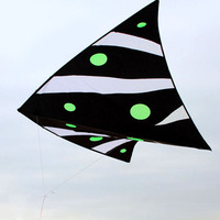 Professional 70in Indoor Floating Delta Kite Zero Wind Single Line Kite PC31 Fabric Outdoor Toy Fun