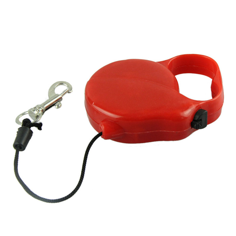 New qualified pet 3m flexible retractable retractable for Retractable cat toy