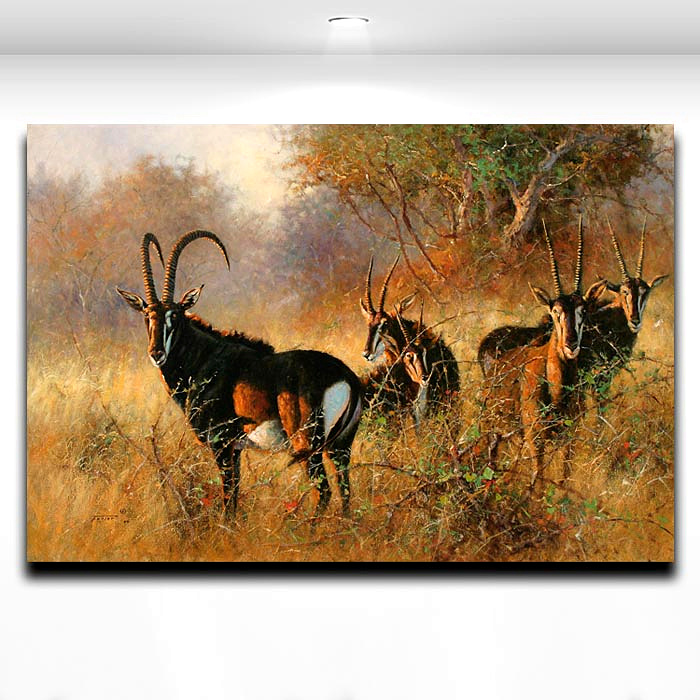 African Antelope Picture Animal Painting Printed On Canvas