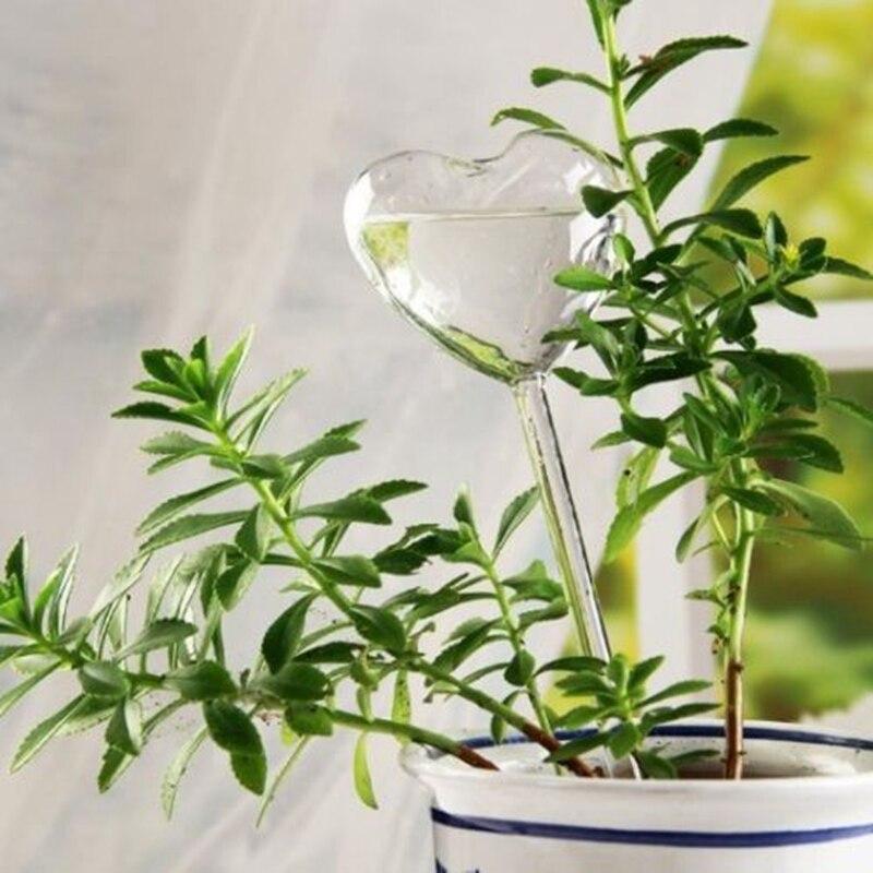 Image 5 - 6 Types de plantes en verre distributeur deau automatique auto arrosage dispositifs oiseau étoile coeur conception plante abreuvoirBidons Deau   -