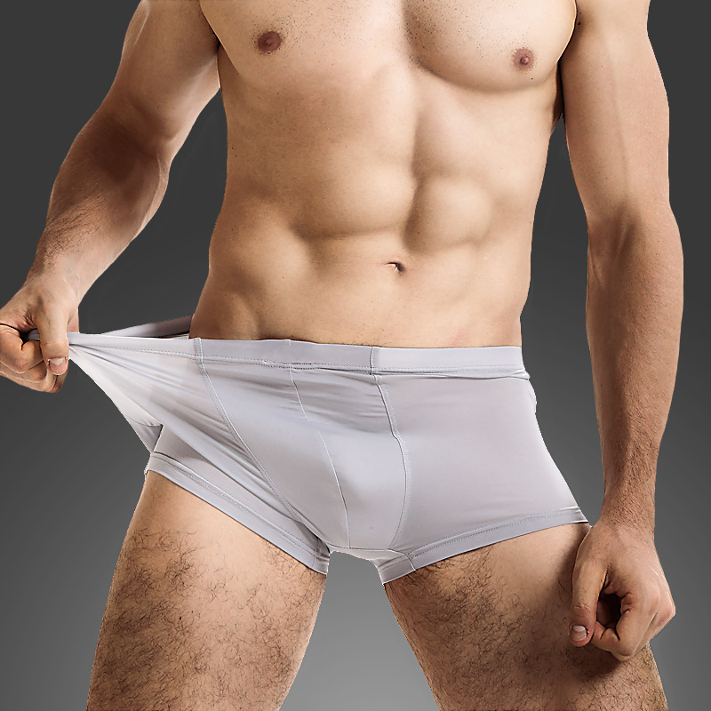 HOT Male Underwear Summer Ice Silk Thin Men Boxer Men's Sexy Underpants For Man Panties Transparent Breathable Cuecas 6 Colors