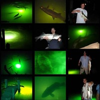 DC 12V LED Underwater Submersible Night Fishing Green Underwater Light Tackle Water Crappie