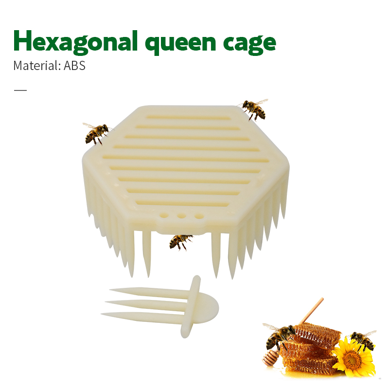 5x Beekeeper Queen Cage Bee Match-box Moving Bee Catcher Cage Beekeeping Tool \