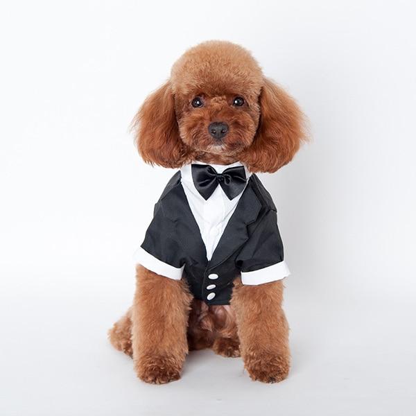 5 Size Cute Pet Dog Cat Clothes Prince Wedding Suit Tuxedo Bow Tie Puppy Coat