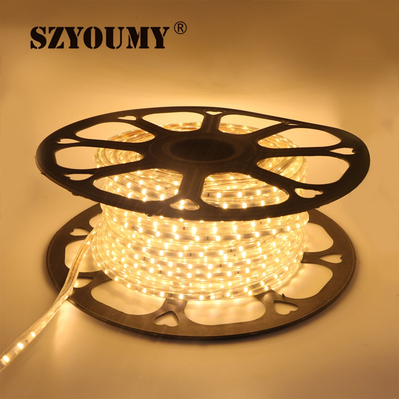 SZYOUMY 220 V светодиодный полосы 2835 60 светодиодный s/M IP65 Водонепроницаемый с Мощность адаптер гибкая светодиодная лента на открытом воздухе на глубину до 50 м 100 м Бесплатная товаров - 3