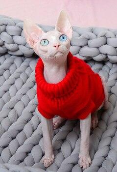 cat sweater for cat