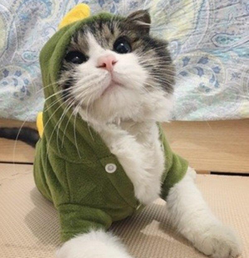 Руно собак кошка одежда костюм для кошек ПЭТ с капюшоном пальто экипировка животное одежда теплый чихуахуа одежда ropa пункт cachorro 4