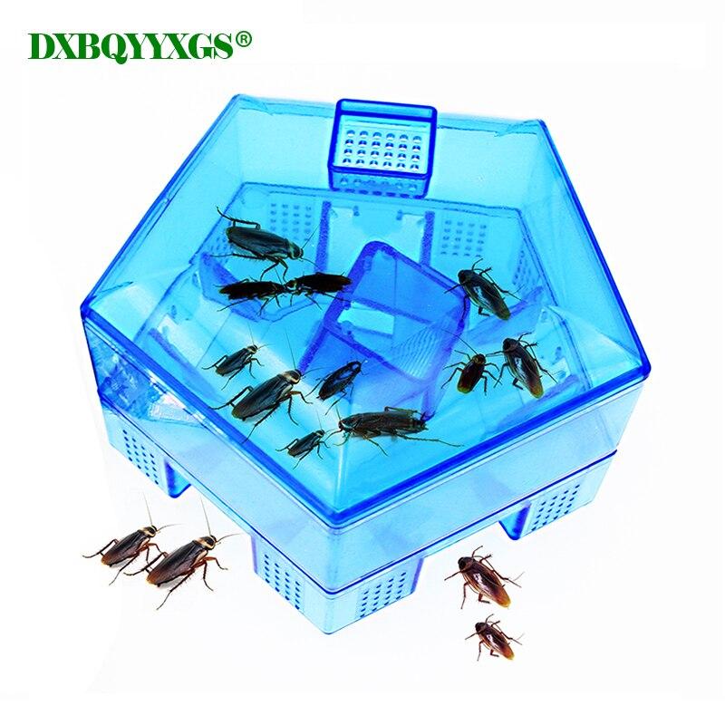 DXBQYYXGS De cafards Cafard Piège Sûre Mise À Niveau Efficace Contient appât Vous pouvez utiliser la nourriture comme appât pour une utilisation illimitée