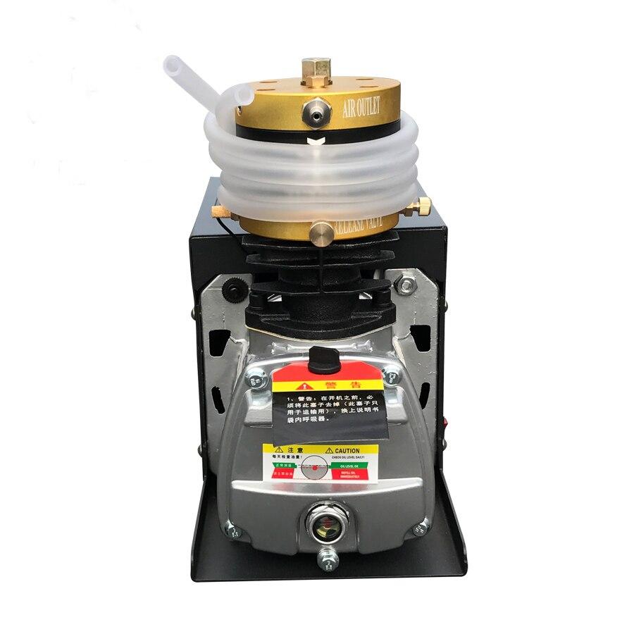 4500PSI 30mpa 300bar pcp pompa compressore d'aria 110V 220V ad alta pressione pompa di aria Elettrica per cilindro serbatoio di gas di riempimento 1 pezzi/lotto