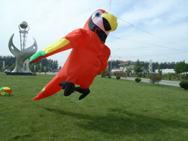 Pêche arc-en-ciel perroquet papagaio voador pipas de voar grands animaux gonflables arc-en-ciel sport girouette doux cerf-volant barre de contrôle