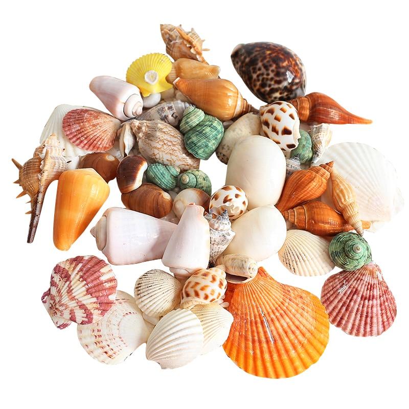 House Decoration Craft Kissing Fish Home Furnishings: Aliexpress.com : Buy Natural Mediterranean Colorful Sea
