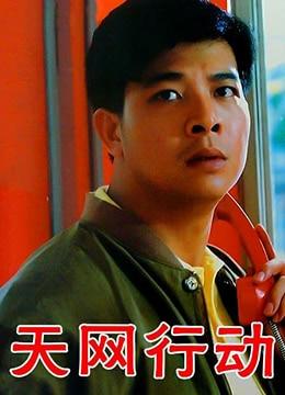 《天网行动》1994年中国大陆,香港犯罪电影在线观看