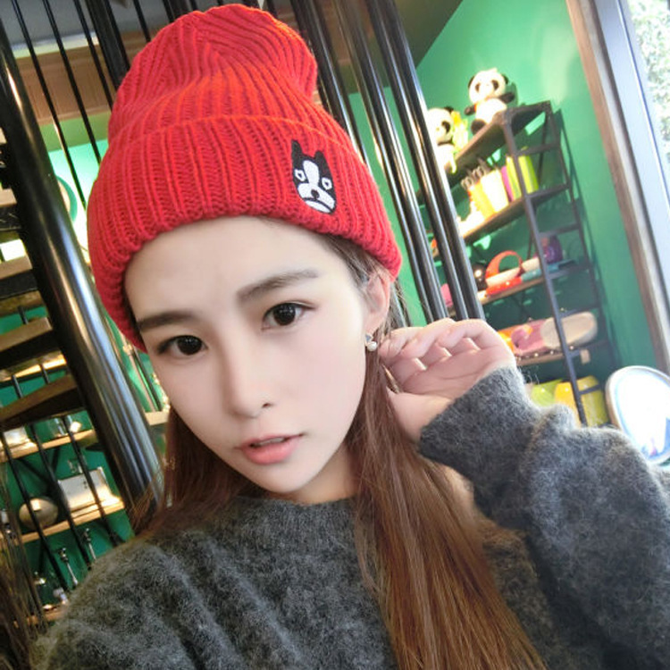 Kesebi 2017 New Fashion Autumn Winter Female Embroidery Dog Pattern Caps Hats Women Korean Cute Puppy Knitted Skullies Beanies