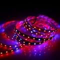 1 pcs 660nm Espectro Completo cresce a luz Led SMD 5050 4:1 4 vermelho 1 Azul lâmpadas Led Strip para o crescimento Das Plantas de aquário com efeito de Estufa luz