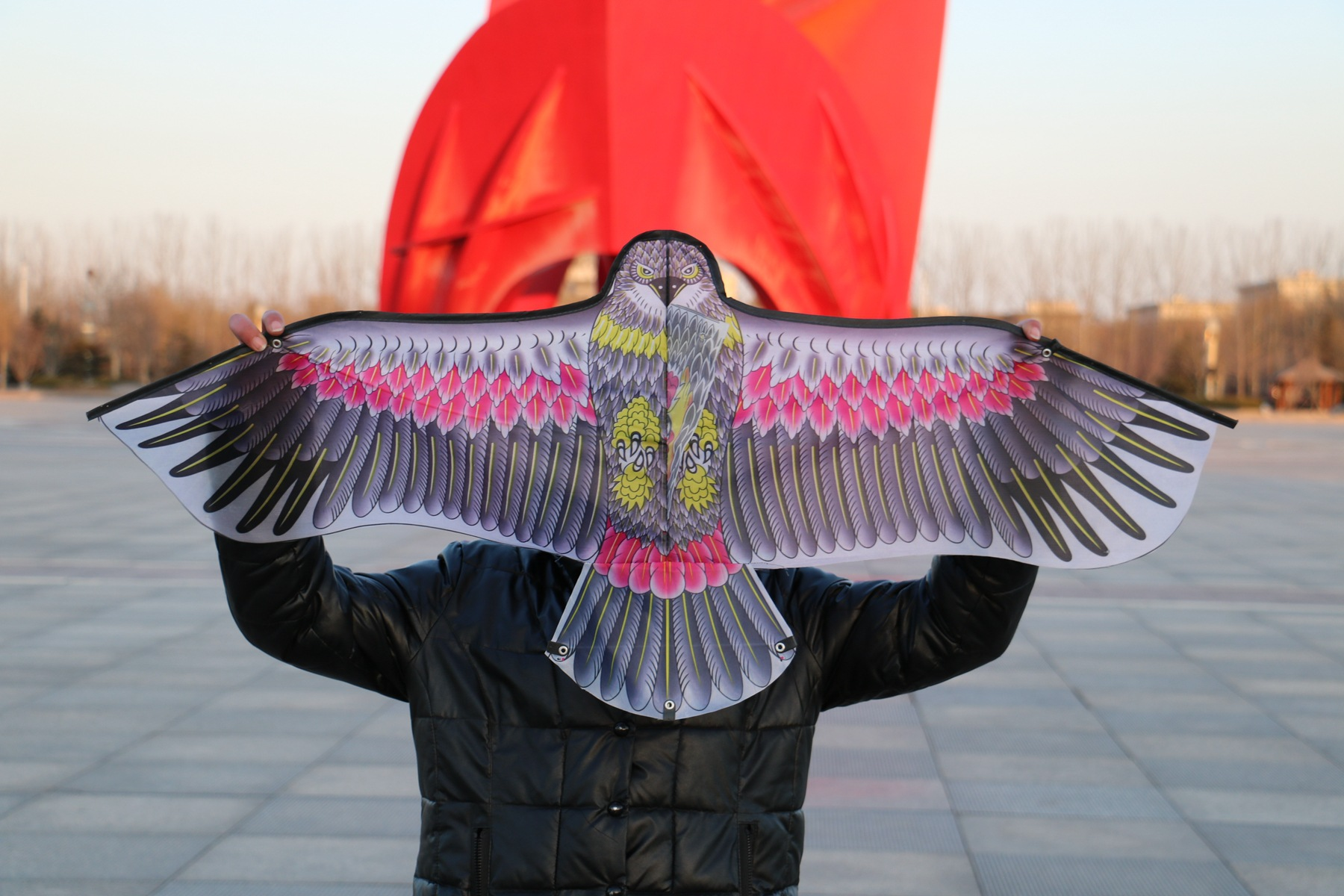 1-Pcs-Random-Color-DIY-Eagle-Kite-Painting-Kite-Flying-without-Handle-Line-Outdoor-Toys-Flying-Papalote-Toy-Kite-Fly-a-Kite-1