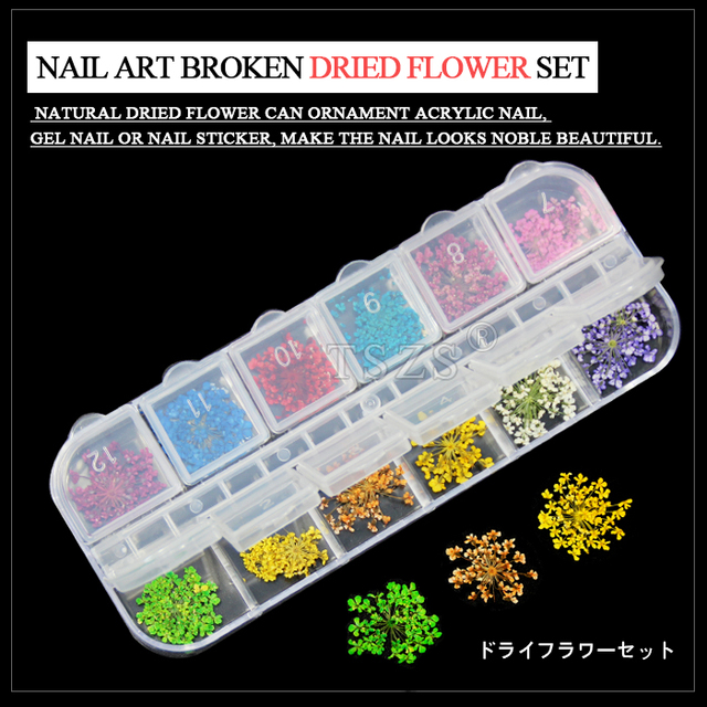 1set /lot Real Dry Dried Flower for 3D UV Gel Acrylic False Tips Nail Art Salon
