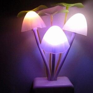 Image 4 - Автоматический яркий грибной светильник Dark, новинка, датчик штепсельной вилки EU & US 110 В 220 В, 3 светодиодный цветной грибной светильник, светодиодный ночник