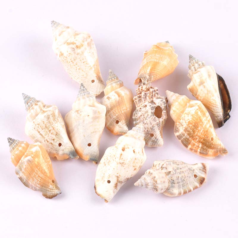 5pcs Natural Shell Scrapbooking Craft Charms Pendants Drop Seashells For Jewelry Making One Hole TRS0275