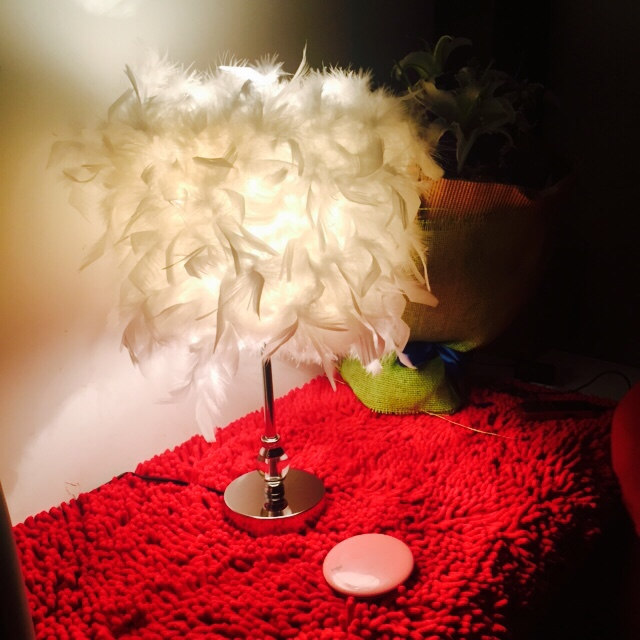Romantic Feather Shade Metal Vintage Antique Elegant Table Lamp Bedside Desk Light Home Decor For Bedside Cafe Bar Store english world 3 grammar practice book