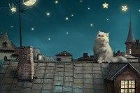 Persian White Cat Kitten Fairytale Fantasy Roof House Sky Night Stars Moon Cities Fantasy Cloth Silk