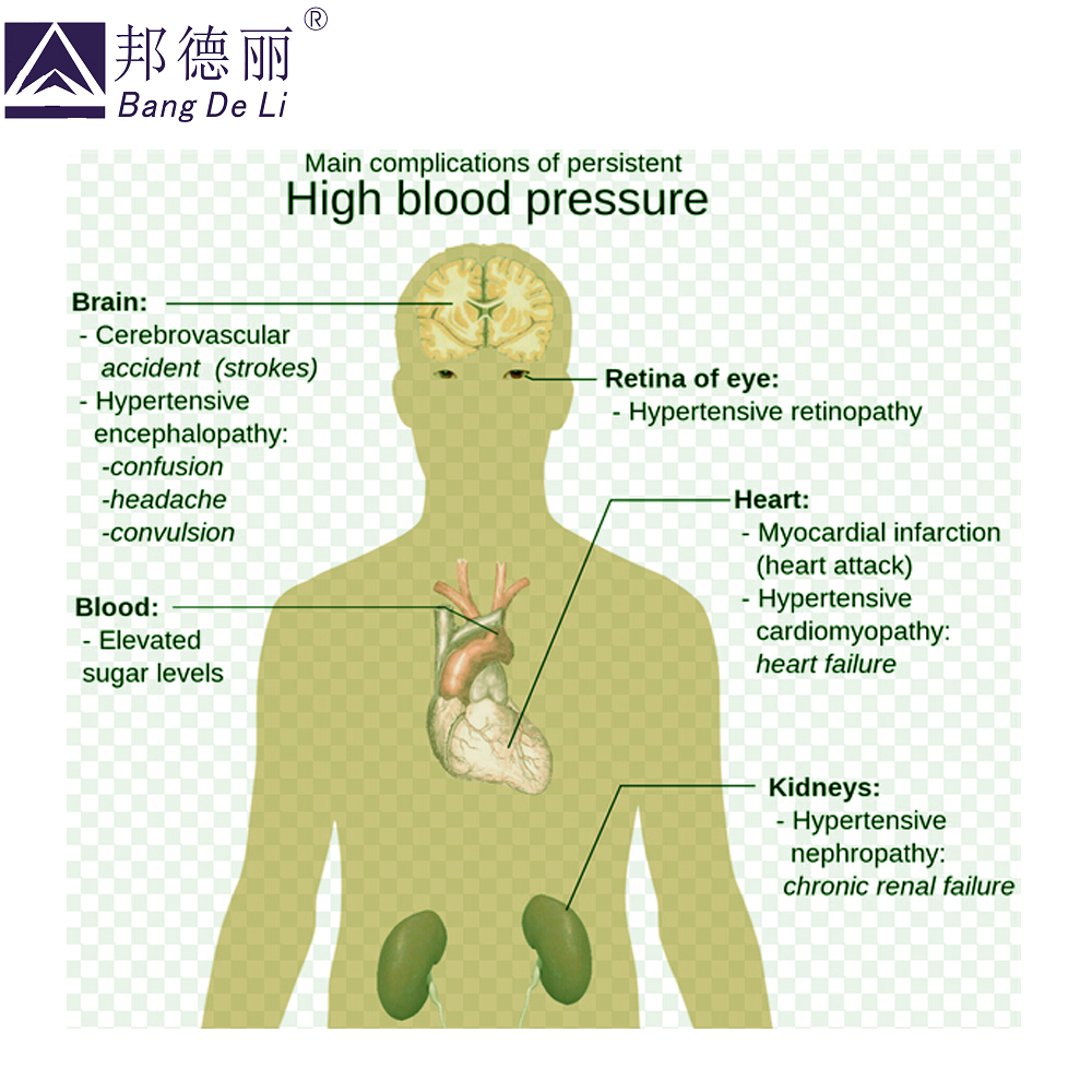 10 stk / lot hypertension patch at reducere højt blodtryk / rent - Sundhedspleje - Foto 4