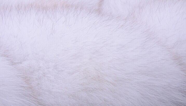 Femmes Gilets black book Renard Red Fourrure Véritable Gilet navy Beige Blue Manteau Cuir wine Fourrures Réel Meilleur rouge gray Les Naturel Femme De 100 Pour White qtHRSPwP