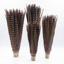 5pcs/lot High quality 30-65cm/Long optional Naturel Pheasant Tail Feather DIY for Hair Extension Wedding wall Decorations