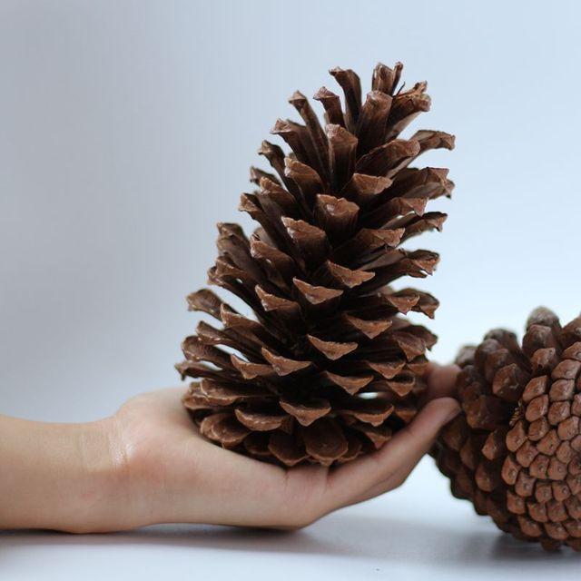 Top 2 pz Albero di Natale Ornamenti Naturali Fiori Secchi Grande Pigne  NR75