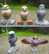 solid PVC figure simulation Model owe Animals Birds scene solid model children's toys 5pcs/set